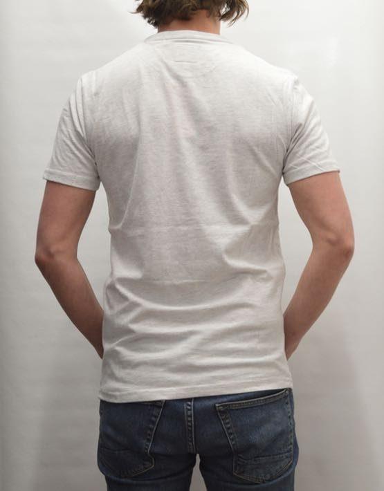 Superdry T-Shirt - Osaka Hibiscus Light Grey