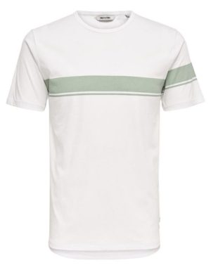 22006126_Seagrass | Only & Sons T-Shirt - Toke SS Tee White Green Stripe | GATE 36 Hobro