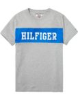 DM0DM02404038 HILFIGER DENIM - LOGO T-SHIRT Blue | GATE 36 HOBRO